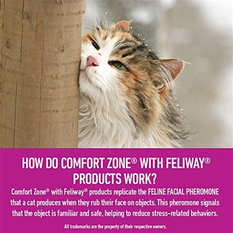 comfort zone cat diffuser comfort zone feliway diffuser refills for cat calming new