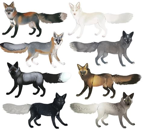 colors of foxes fox colors ii by witherlings on deviantart