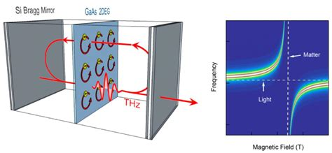 How Does Light Behave When It Interacts With Matter by Light And Matter Merge In Quantum Coupling