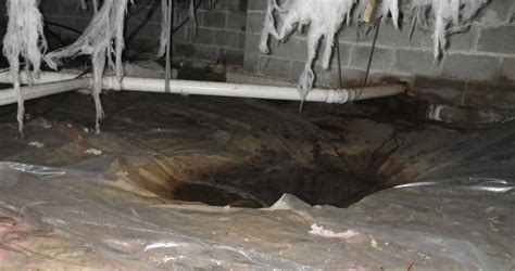standing water in basement quality 1st basement systems basement waterproofing photo album standing water in manahawkin