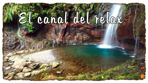 imagenes naturaleza relajante sonidos relajantes de la naturaleza agua y pajarillos