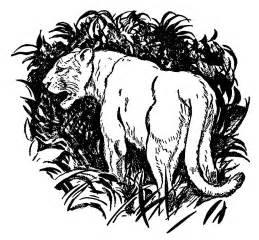 panther colors big cat coloring pages