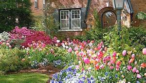 Fall Gardening In Oklahoma - south central gardening tulips for spring color