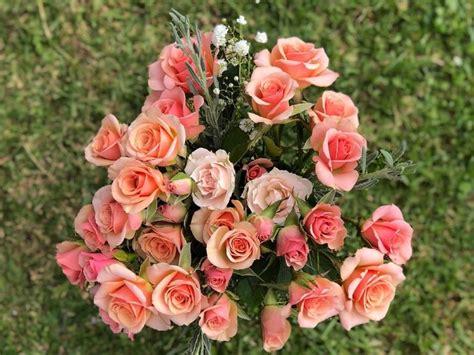 viral pria beri kekasihnya kado valentine buket bunga