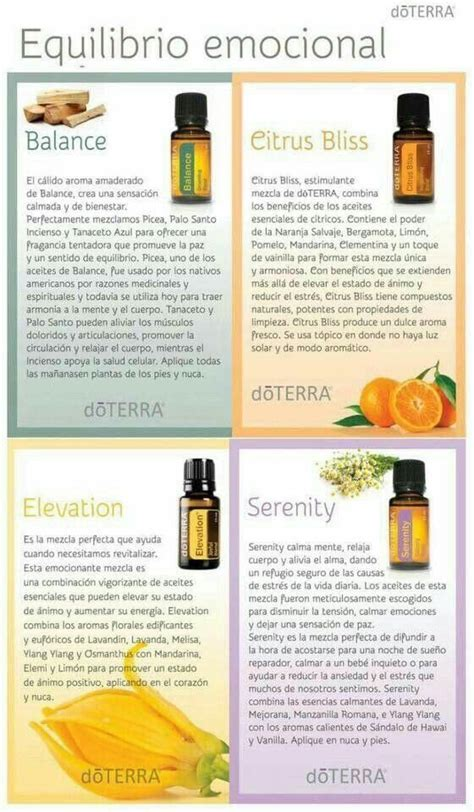 melaleuca uso interno 444 best images about doterra on melaleuca