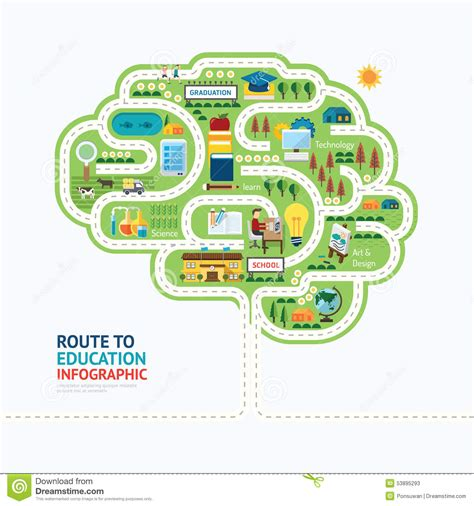 concept design vs illustration infographic education human brain shape template design