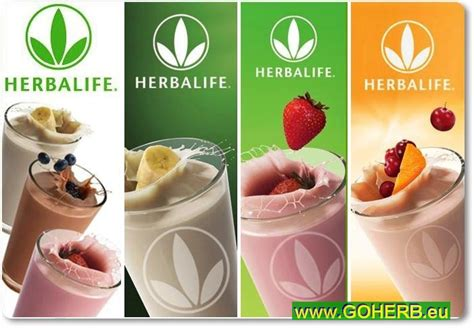 Herbalife Shake F1 Berry delicious and healthy herbalife shake recipes