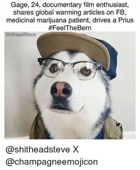 Bio Memes - 41 dog bios that will definitely remind you of someone you