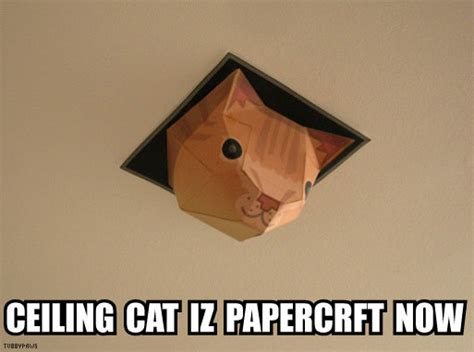 Ceiling Cat Meme - ceiling cat papercraft by tubbypaws
