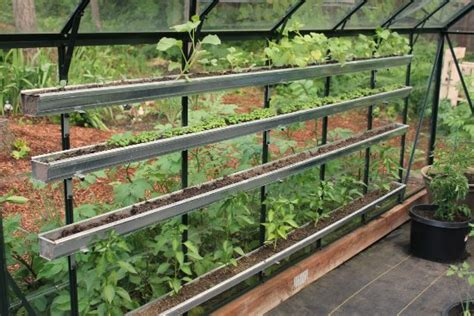 greenhouse gardening   pacific northwest