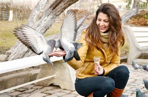 alimentazione piccioni felice giovane donna di alimentazione piccioni scaricare