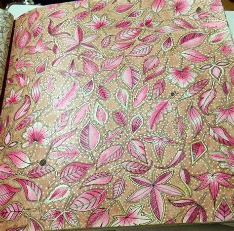 secret garden colouring book tips 12 best folhas jardim secreto images on