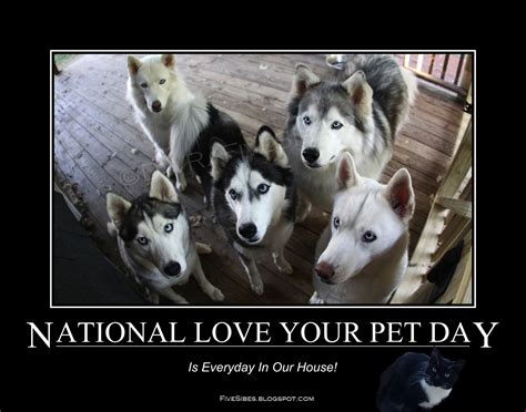 fivesibes happy national love  pet day