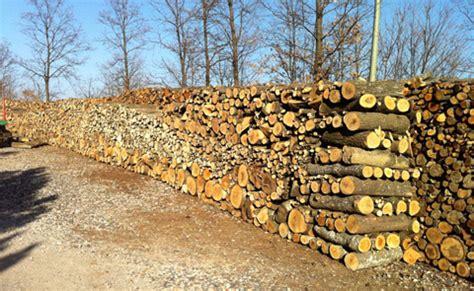 vendita legna per camino carbone e legna da ardere bombole gas roma