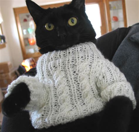 knitting pattern jumper for cat knitting patterns cat sweaters 1000 free patterns