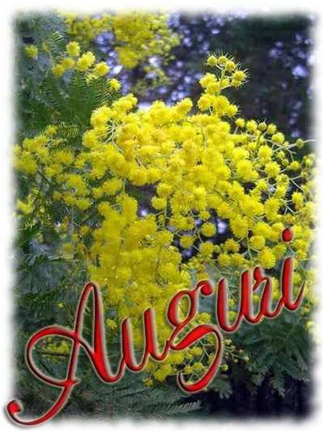 foto 8 marzo fiori fiori per l 8 marzo festa della donna immagini gif