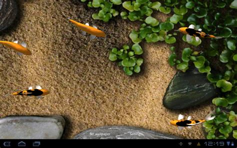 koi live wallpaper full version for android android wallpaper review koi live wallpaper android central