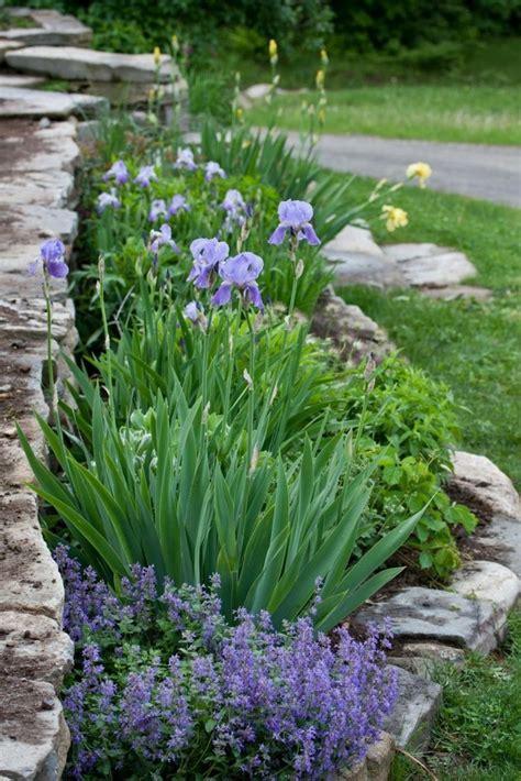 blumengarten anlegen steingartenpflanzen unsere 6 favoriten machen die