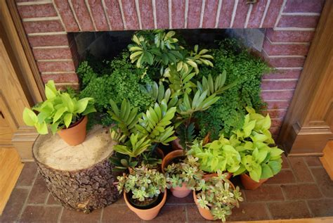 indoor plant decoration summer decorating ideas for your fireplace the blog at