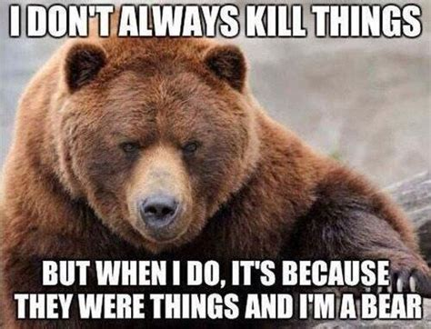 Bear Meme - ten bear stories you need to know about