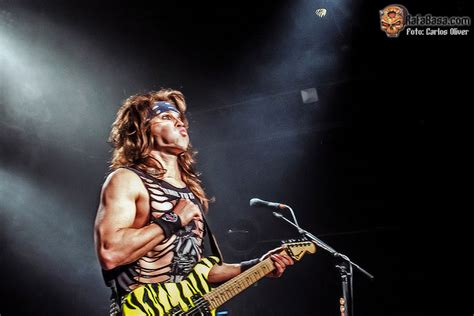 barcelona panther fotos carlos oliver www facebook com carlos oliver music photography