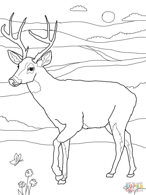 hunting free colouring pages