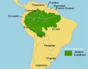 rainforest map south america the rainforest