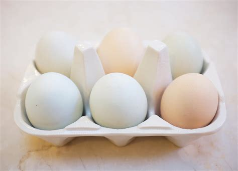 carbohydrates in 6 eggs how many calories are in an egg popsugar fitness