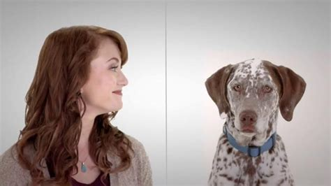 liberty mutual perfect record pic commercials i hate actors names of perfect couple liberty mutual commercial