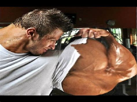 best arm top 6 best arms in history of bodybuilding