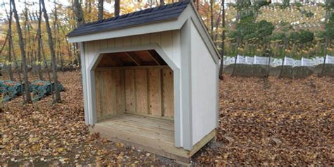 Saltbox Colonial Shed Plans How To Build A Shed With Icreatables Diy