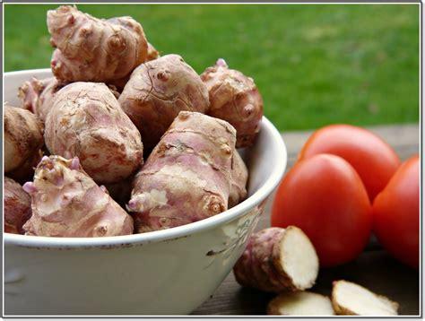 fruit and vegetable detox vegetable detox 15 best vegetables to detox your for