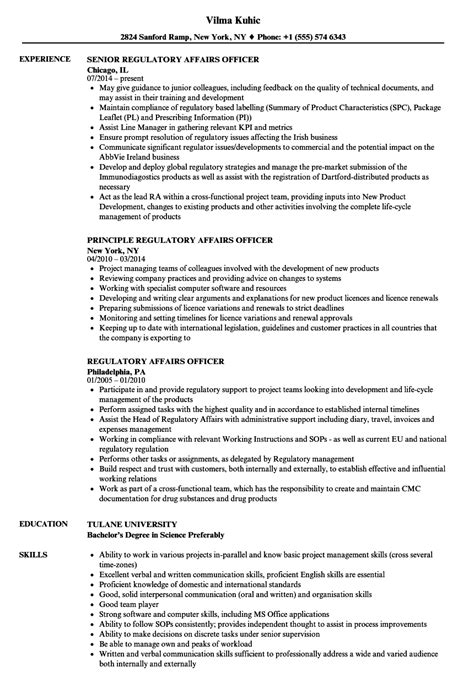 Humane Officer Sle Resume by Humane Officer Sle Resume Meal Voucher Template 1 Page Executive Summary Template Strategic