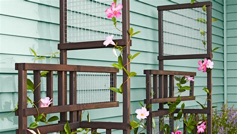 inspiring diy garden trellis ideas  growing climbing