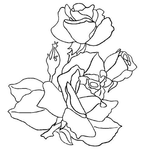 imagenes de rosas azules para dibujar dibujos de rosas florpedia com