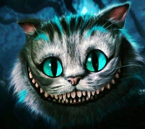 imagenes uñas gatos gato sonriente discovered by saypinku on we heart it