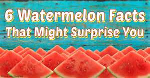 6 watermelon facts that might surprise you