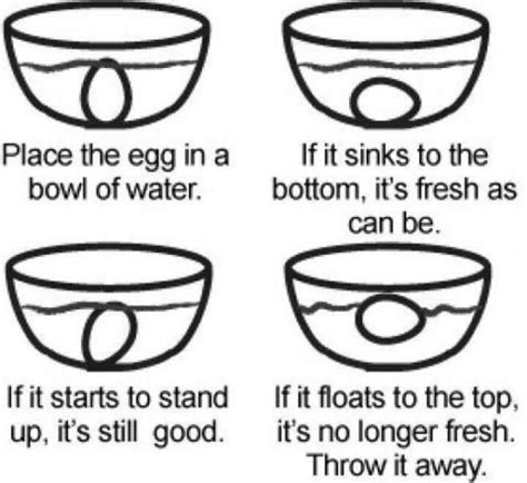 good bad egg test food tips charts etiquette good bad egg test food tips charts etiquette egg test so and eggs