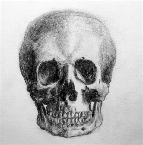 Drawing Of A by Skull Drawing 3d Drawing