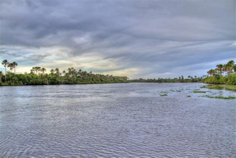 amazon river south america map amazon river images