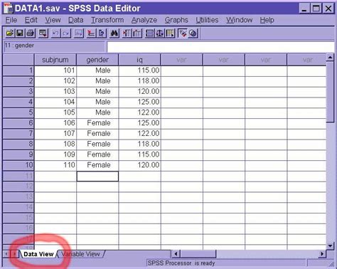 spss tutorial input data spss tutorial navigating spss windows