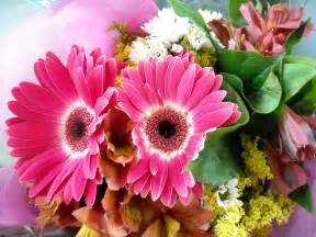 bouquet of flowers images collection for free download