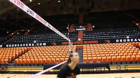 volleyball setter dump drills 569 best images about volleyball on pinterest