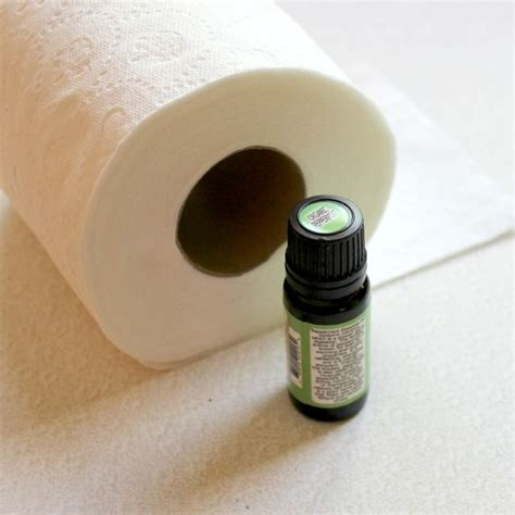 keep bathroom smelling fresh 10 ways to make your home smell wonderful crafts a la mode bloglovin