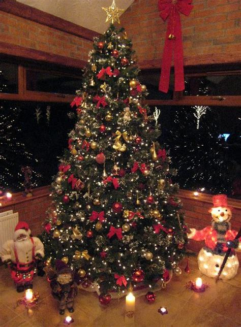 liam donnelly s christmas tree from northern ireland