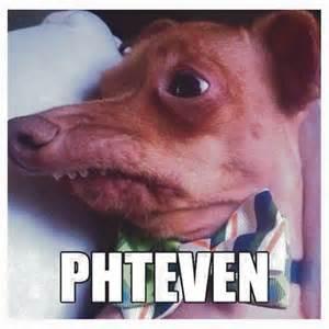 Dog Duvet Phteven Gifts Amp Merchandise Redbubble