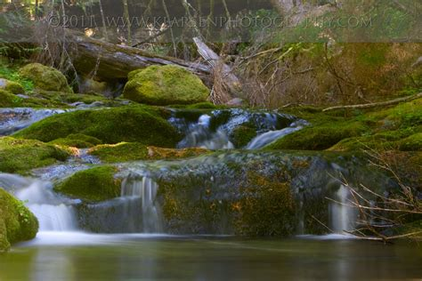 Bohemia Park Cottage Grove by On Friday Cottage Grove Oregon Photographer 187