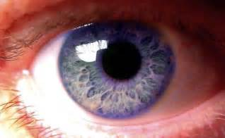 unique eye colors human eye colors violet unexplained