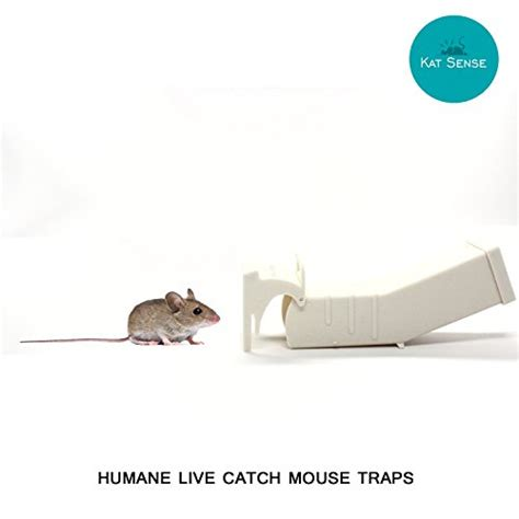 humane mouse traps set of 3 cruelty free live catch trap