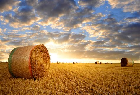 hay le hay bale background gallery yopriceville high quality